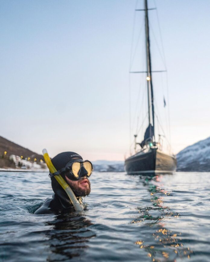 Diving with whales in the Arctic